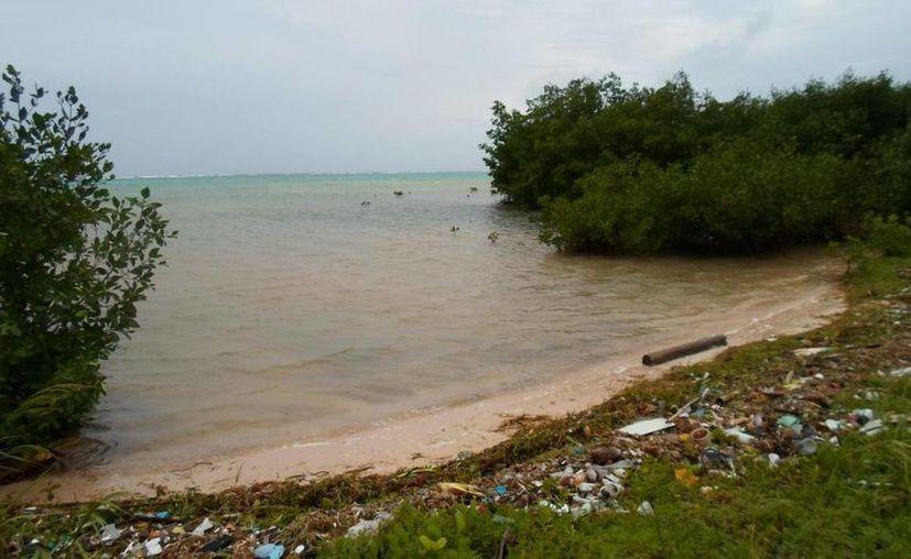 El impacto ambiental se genera en mayor cantidad en la zona Norte del Estado. (Redacción/SIPSE)