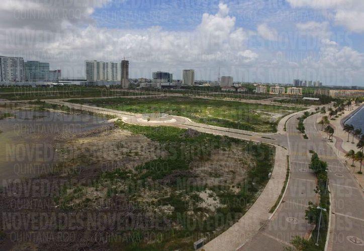 La directora regional del Cemda señaló que las vialidades ya construidas no serán demolidas. (Luis Soto/SIPSE)