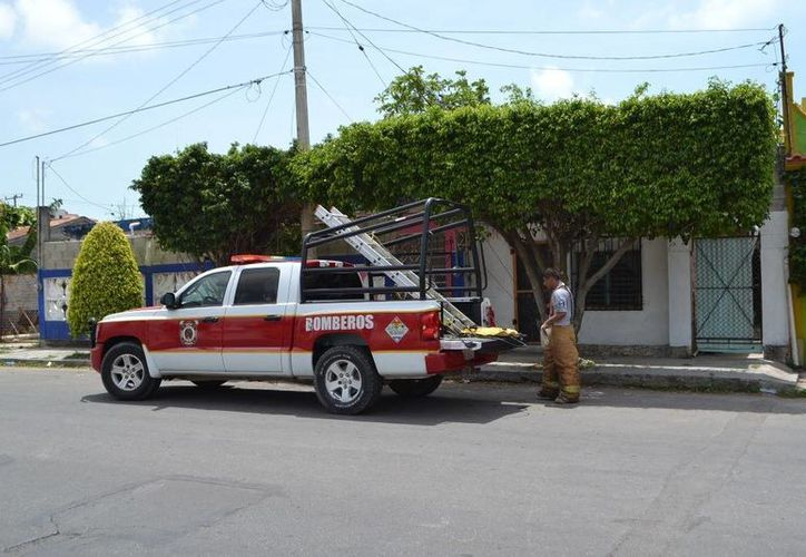 Policías finalmente debieron eliminar el foco de peligro en la colonia Centro, usando fuego. (Redacción/SIPSE)