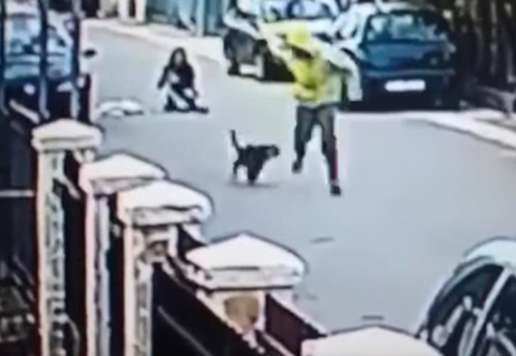 El perro saltó encima del agresor. (Captura YouTube).