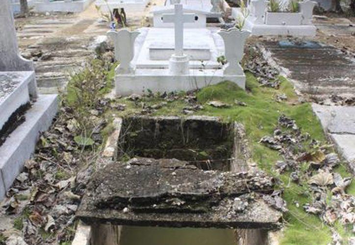 Las personas que acuden a limpiar los mausoleos de sus familiares se encuentran con un panorama desalentador. (Harold Alcocer/SIPSE)