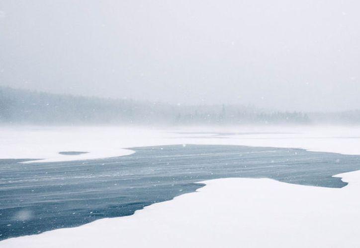 Una valiente paseadora de perros se tiró a un lago helado para salvar a un husky.   (Pixabay)