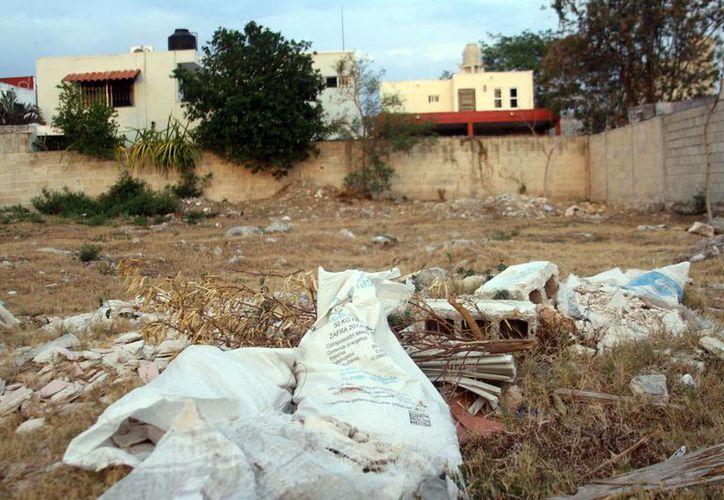 Muchos terrenos, como el de la imagen, representan focos de infección. De mil 135 baldíos identificados, solo 465 son de particulares. (César González/SIPSE)