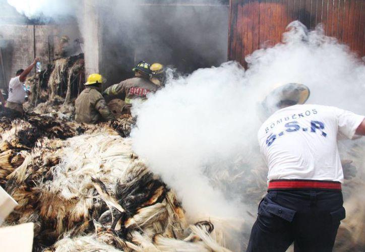 Un voraz incendio destruyó una antigua desfibradora de henequén. (Aldo Pallota/SIPSE)