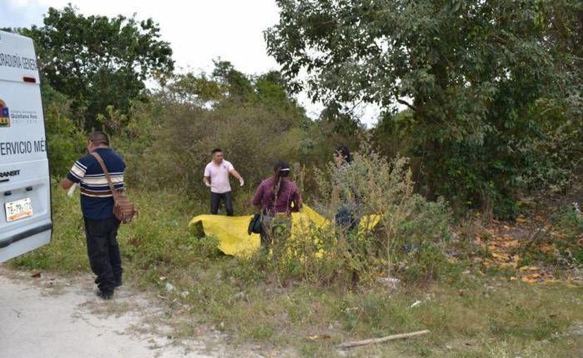 El pasado lunes el cuerpo de un hombre fue hallado en un área verde de la colonia Cetina Gasca, en Puerto Morelos. (Redacción/SIPSE)