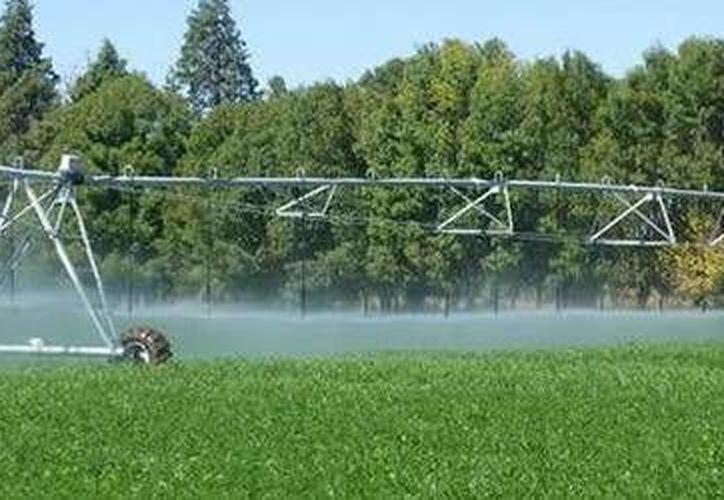 El manejo del suelo y el agua son fundamentales para la producción de alimentos. (Conagua)