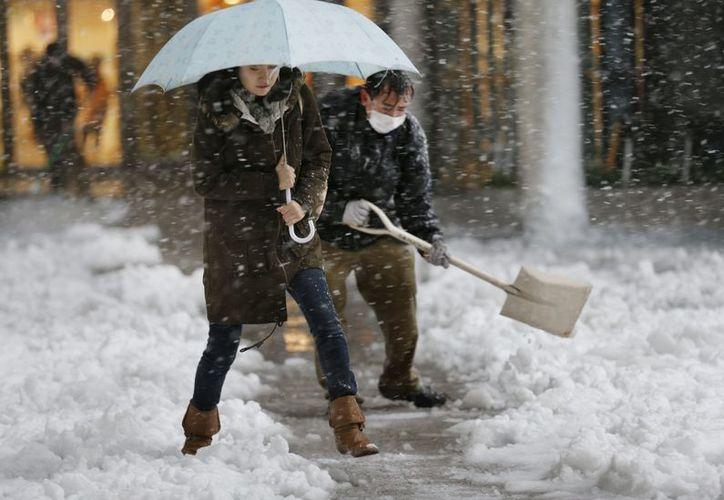 Transeúntes caminan en Tokio, donde la nieve alcanzó los 10 centímetros de altura. En algunos sitios de la capital llegó a 12 centímetros. (Agencias)