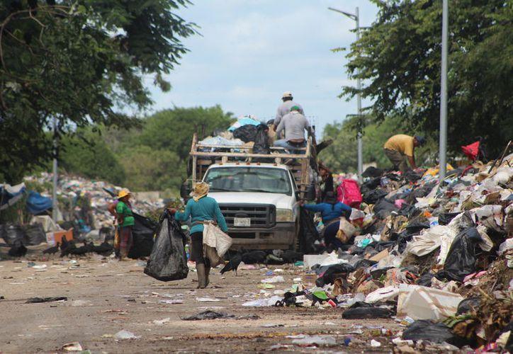 El basurero de Othón P. Blanco dejará de recibir los residuos sólidos que se generan en Chetumal. (Ángel Castilla/SIPSE)