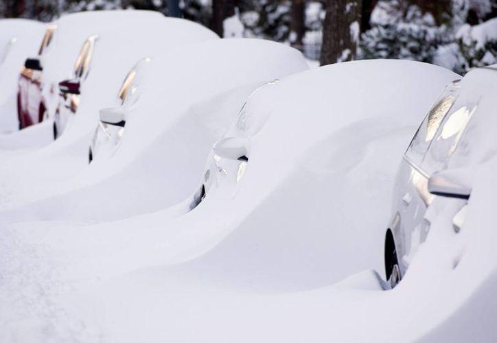 Imagen de una hilera de autos cubiertos casi en su totalidad por la nieve en Washington DC. (EFE)