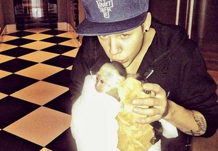 Mientras Justin Bieber enfrenta otra demanda de paternidad, 'Mally', su mono acabó en un zoológico en Alemania. (@justinbieber)