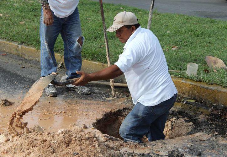 Los trabajadores solicitan la homologación de sueldos, es decir, que les aumenten el 5%. (Jesús Caamal/SIPSE)