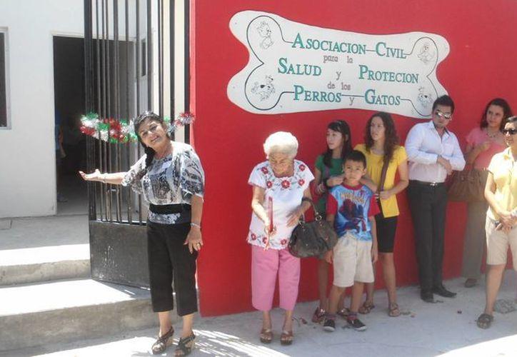 La clínica animal brinda servicios a personas de escasos recursos. (Milenio Novedades)