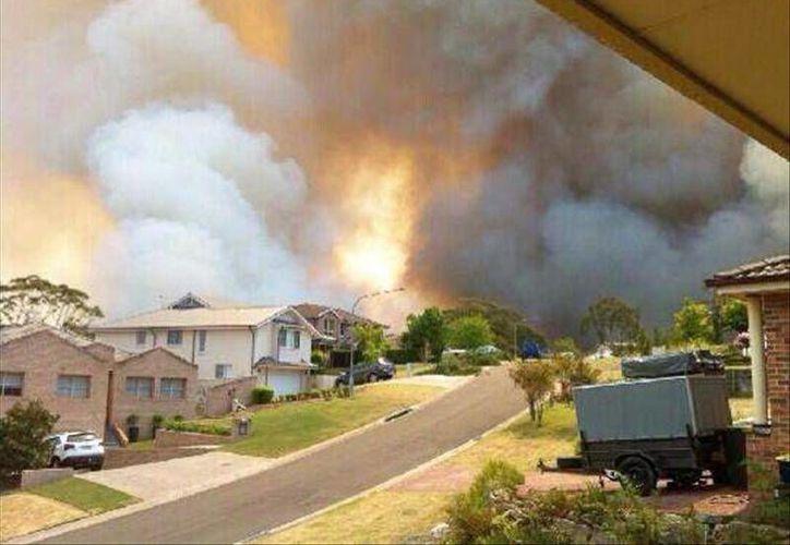 Se trata de la peor jornada de incendios forestales que ha tenido el país en décadas. (EFE)