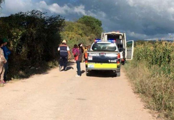 Niño de 11 años murió en accidente automovilístico tras tomar 'prestado' el auto de su padre. (Excélsior).