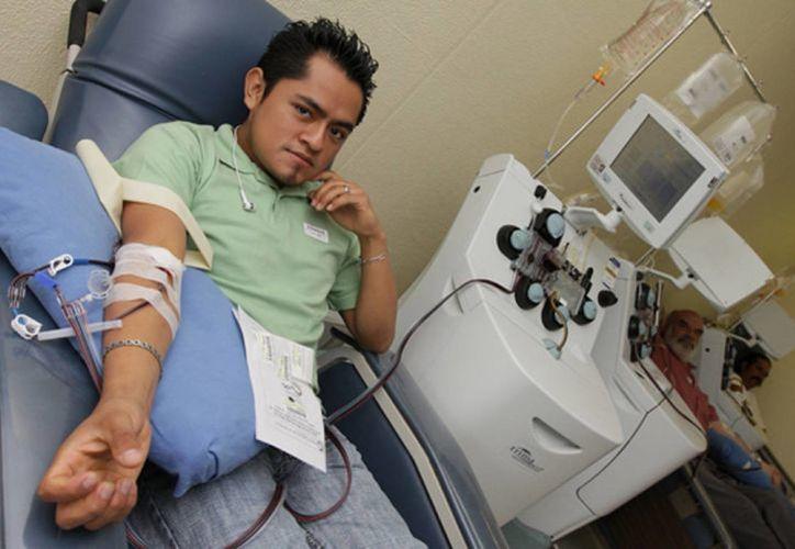 """La persona que realiza esta donación regenera su sangre ya que el cuerpo """"fabrica"""" sangre nueva"""". (Notimex)"""