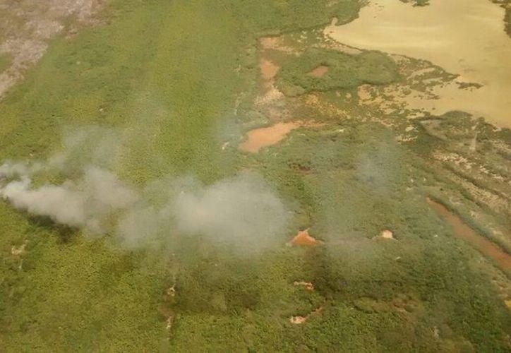 Se realizaron vuelos sobre el área para determinar las medidas de combate. (Jesús Tijerina/SIPSE)
