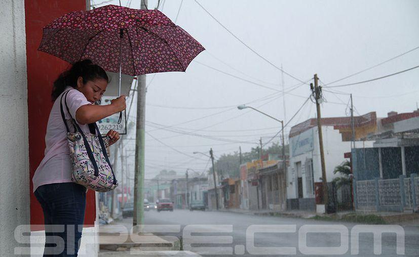 Al parecer la lluvia no cesará en los siguientes días, según los pronósticos. (José Acosta/ Milenio Novedades)