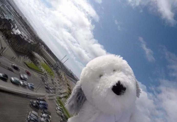 El perro Sam ha llegado donde ningún animal de peluche lo hizo antes: la estratosfera. (AP)