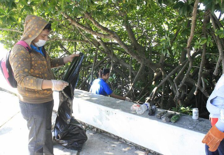 La Dirección de Ecología plantea redoblar tareas de cuidado al medio ambiente, incluso con objetivo de aumentar el turismo, pues hay visitantes que buscan una certificación ambiental para elegir el destino. (Harold Alcocer/SIPSE)