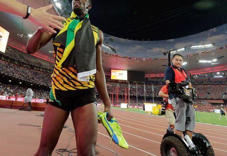 Un camarógrafo que seguía de cerca a Usain Bolt 'tropezó' con un riel y se llevó de corbata al altleta, quien celebraba la obtención de la medalla de oro en los 200 metros, en el Mundial de Atletismo. (AP)