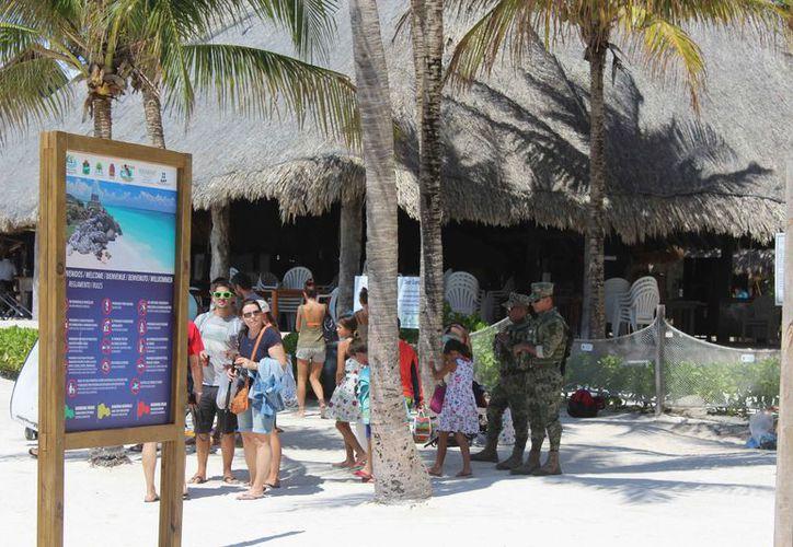 Las cooperativas venden a los turistas tours para nado con tortugas. (Sara Cauich/SIPSE)