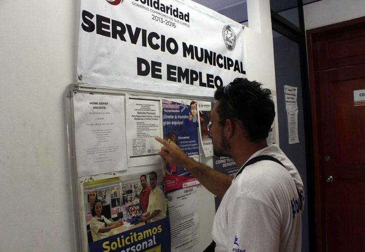 La bolsa laboral que provee el Ayuntamiento mantiene una oferta de 250 puestos al mes.  (Redacción/SIPSE)