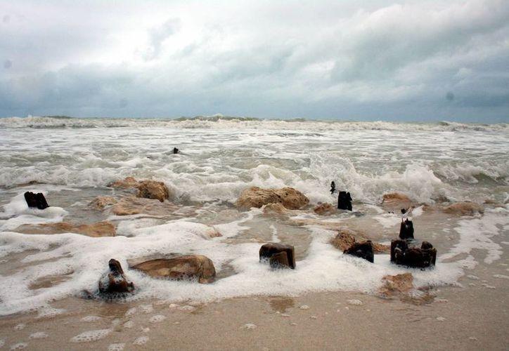 Los trabajos de rescate de playas comenzarán en la zona de Chuburná y terminarán en Yucalpetén. (Milenio Novedades)