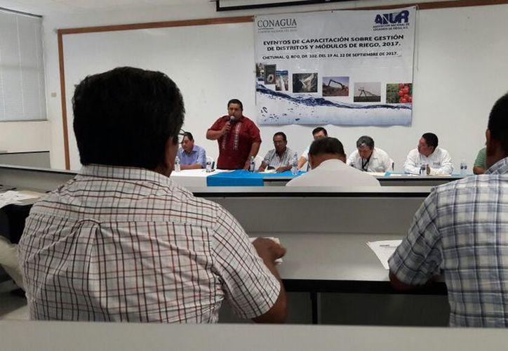 El curso concluirá el 22 de septiembre. (Carlos Castillo/SIPSE)