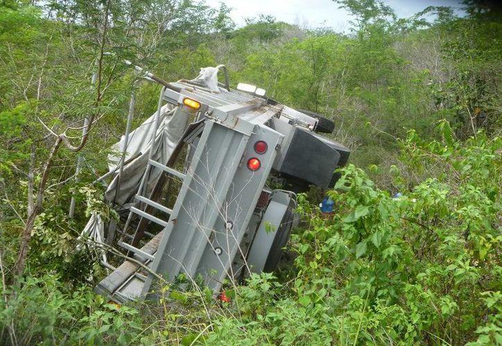 La unidad avanzó 10 metros dentro del área verde. (Raúl Balam/SIPSE)