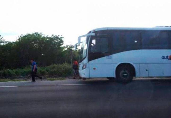 Los viajeros de la ruta Mérida-Progreso ya pueden conectarse sin costo a internet, gracias a que las unidades de Autoprogreso ya tienen el servicio de Wi-Fi. (Archivo/SIPSE)
