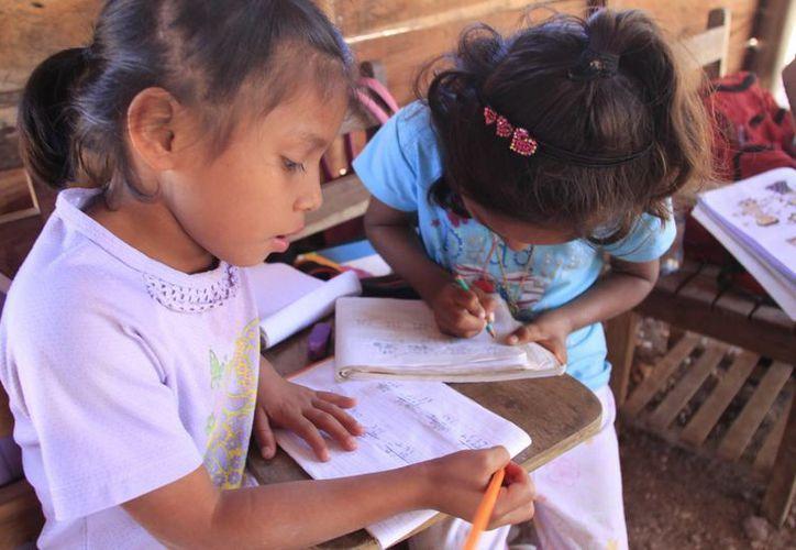 La mayor parte de rezago educativo en Quintana Roo se encuentra en Benito Juárez y Othón P. Blanco. (Benjamín Pat/SIPSE)
