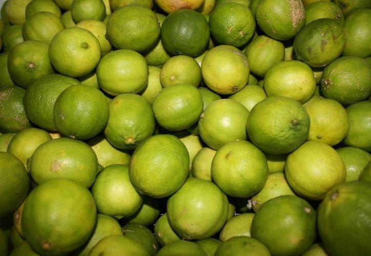 Analizan los factores que aumentaron el precio del limón. (Redacción/SIPSE)