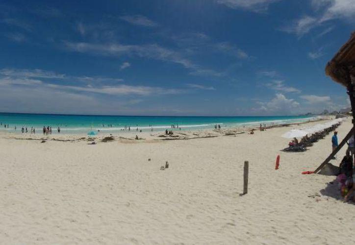 En junio pasado aumentó el volumen del arribo de sargazo en las playas. (Redacción/SIPSE)