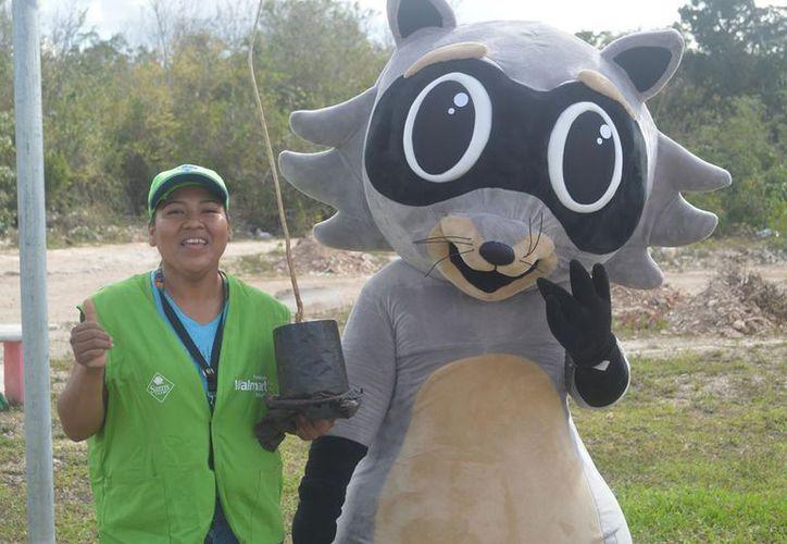 La reforestación se llevó a cabo en uno de los parques del fraccionamiento El Caribe. (Foto: Redacción)