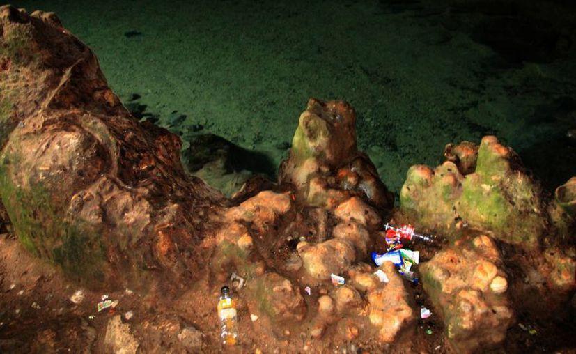 Cenotes como el de San Marcos, ubicado en la localidad de Yunkú, del municipio de Sacalum se encuentran muy contaminados. (Milenio Novedades)
