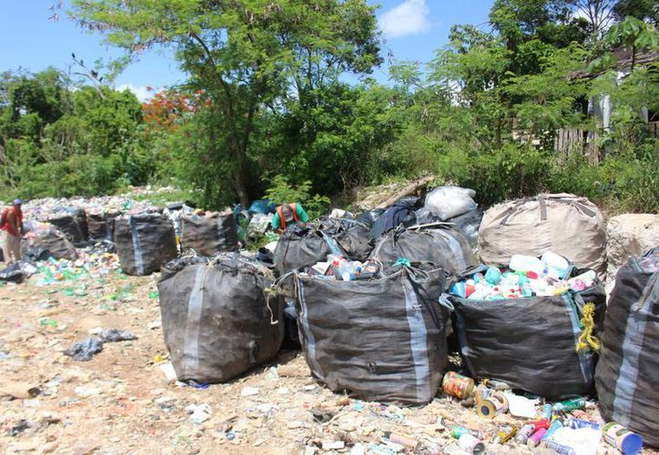 Actualmente la basura es depositada en cualquier parte del terreno. (Benjamin Pat/SIPSE)