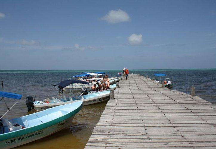 Los pescadores de Punta Allen no piensan usar el permiso que tienen para la captura de tiburón; buscan preservar la especie. (Sara Cauich/SIPSE)