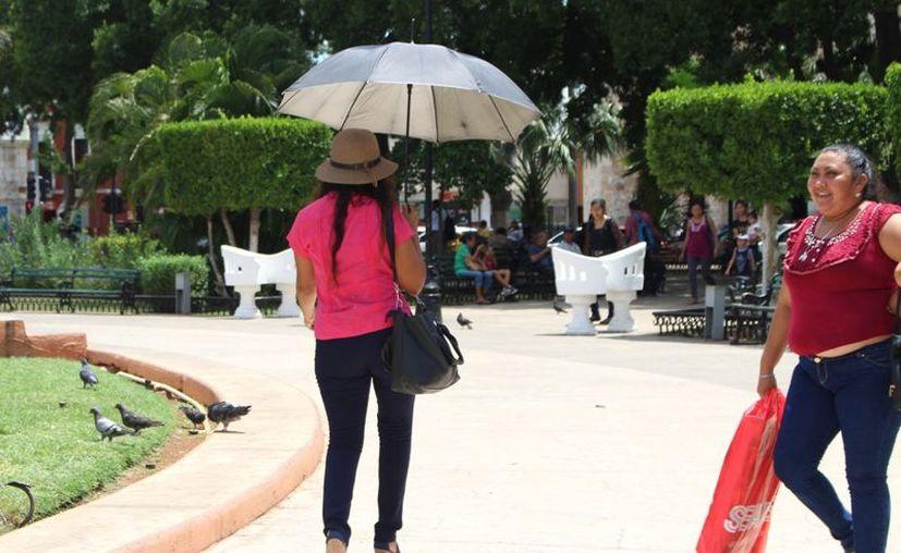 El ambiente será de caluroso a muy caluroso por la tarde. (Novedades Yucatán)