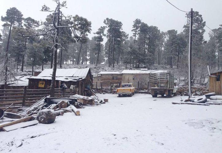 Se espera que la venidera tormenta invernal deje entre los cero y los cinco grados bajo cero varios estados del norte de México. En la foto, La Rosilla, Durango. (Notimex/Contexto)