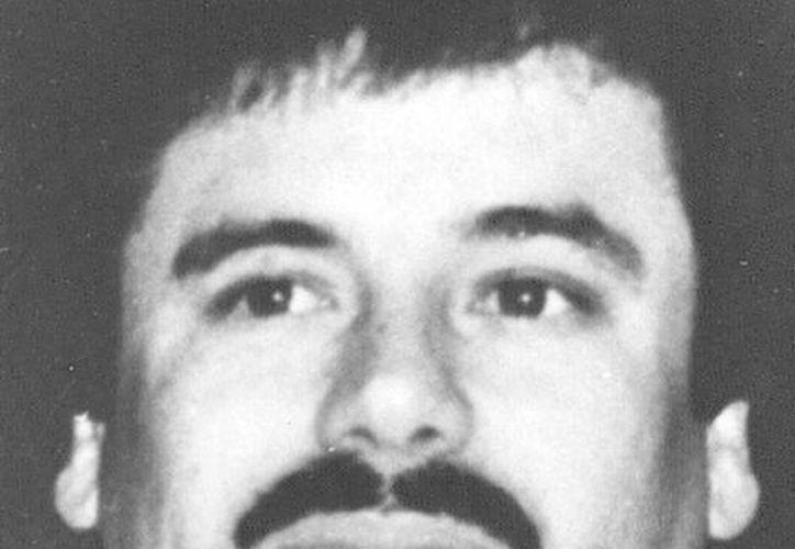 Joaquín Guzmán, <i>El Chapo</i>, era uno de los narcotraficantes más buscados en el mundo. La foto corresponde al 31 de mayo de 1993. (Agencias)