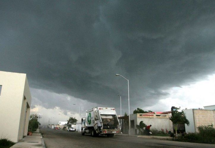 La segunda turbonada de la semana sorprendió a los habitantes de la capital yucateca. Se presentaron árboles caídos en varias zonas de la ciudad. (Amílcar Rodríguez/ Milenio Novedades)