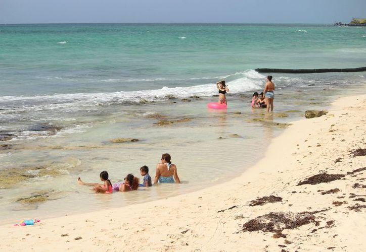 Las playas registran el problema recurrente del sargazo y erosión. (Adrián Barreto/SIPSE)