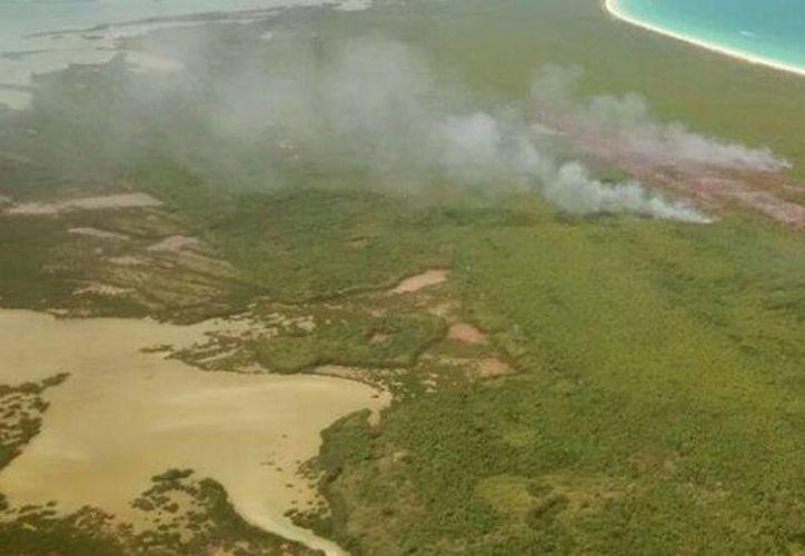 La Profepa anunció que verificará los daños causados por el incendio en la zona de manglar de Holbox que inició el sábado pasado. (Cortesía)