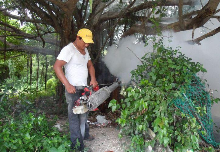 Casos de dengue continúan a la baja, gracias a las acciones preventivas. (Julián Miranda/SIPSE)