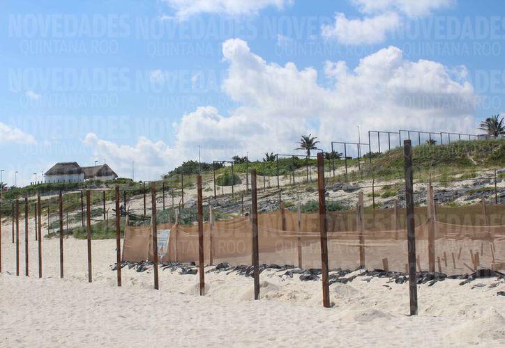 Piden investigar la construcción del complejo hotelero a lado de El Mirador de Playa Delfines. (Redacción)