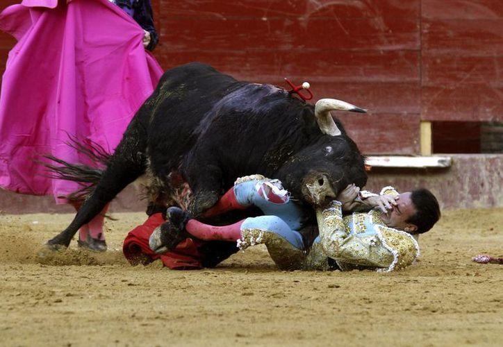 El torero Enrique Ponce sufre un percance con el primer toro de su lote en la penúltima corrida de toros de la Feria de Fallas, en la plaza de Valencia. (EFE)