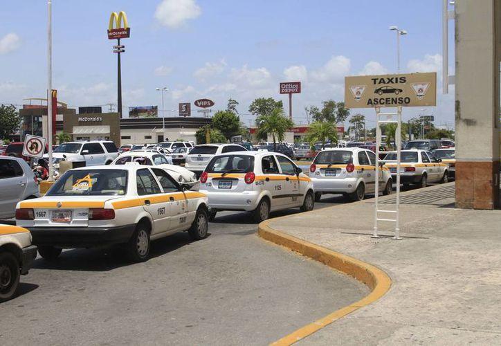 Los turistas temen ser víctimas de los robos ejecutados por algunos taxistas. (Harold Alcocer/SIPSE)
