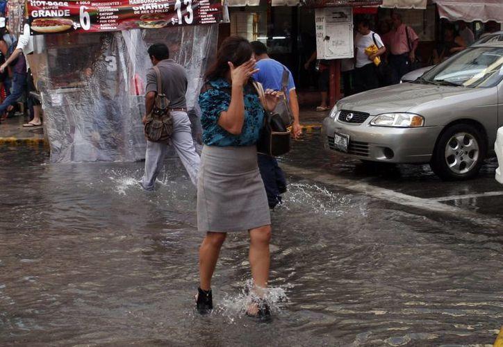 En este año las lluvias han sido constantes e intensas. (SIPSE)