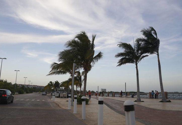 La dependencia federal le queda tres predios en el Malecón. (Israel Leal/SIPSE)