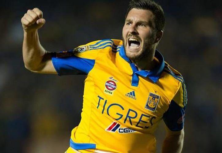 Gignac ha caído en una mala racha goleadora con Tigres en los últimos partidos de la Liga MX.(Notimex)